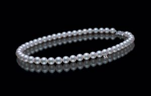 pearl-perle-pearls-natural pearl-saltwater pearl-conch pearl-south sea pearl