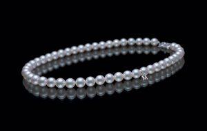 pearl-perle-pearls-natural pearl-saltwater pearl-conch pearl-south sea pearl
